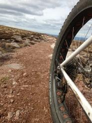 Fat Tyres & Gears