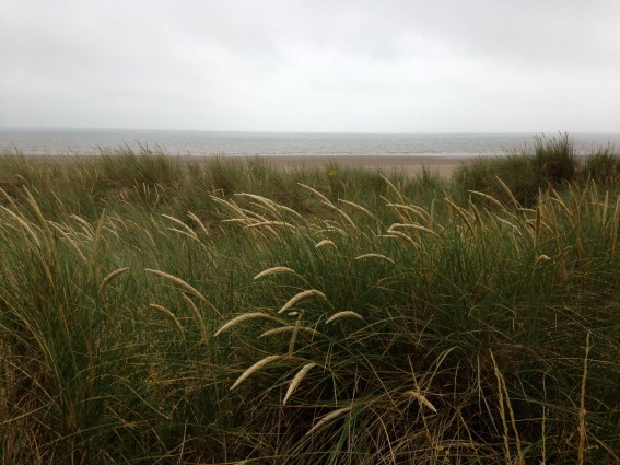 August: a ride to the seaside