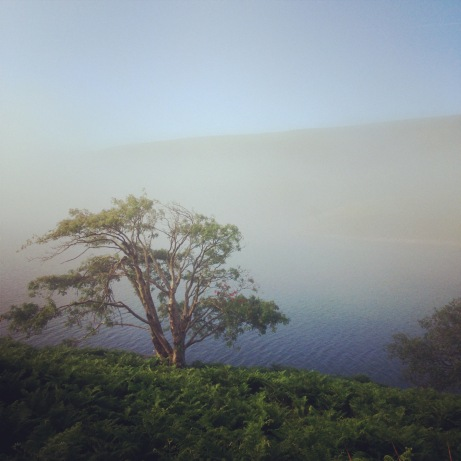 August: early morning Black Mountains ride